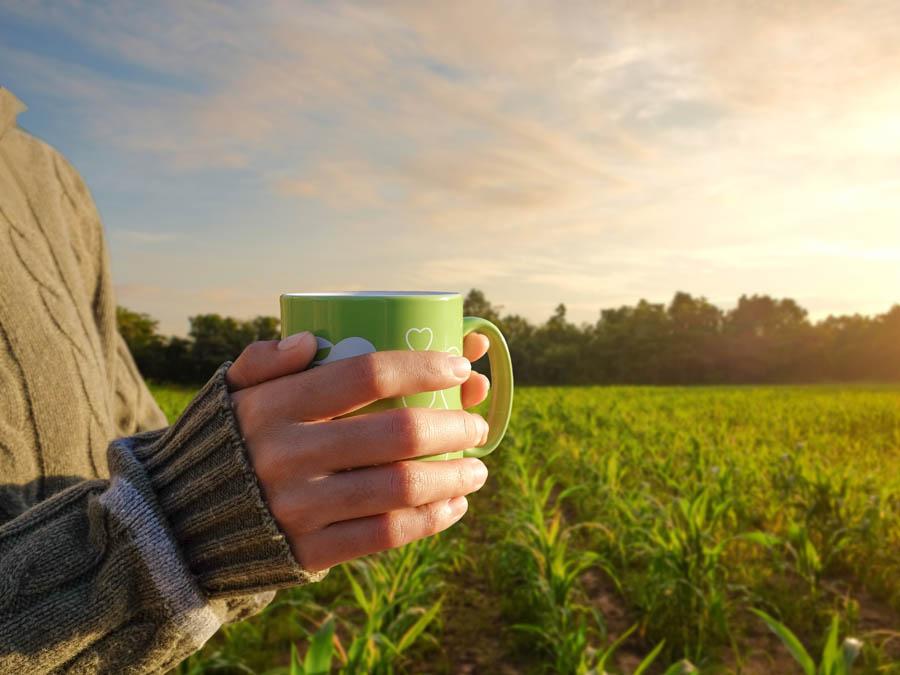 Übernachtung Oder-Neiße Radweg Morgenkaffee